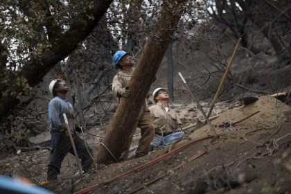 Judge Blames Deadly California Wildfires on PG&E's Uninsulated Power Conductors