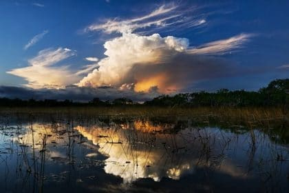 House Committee Headed to Florida for Field Roundtable on WRDA