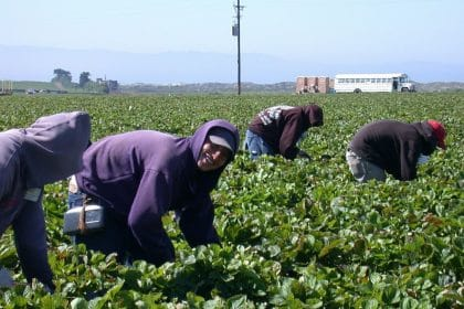 Problem Solvers Caucus Endorses Bipartisan Agricultural Workers Bill